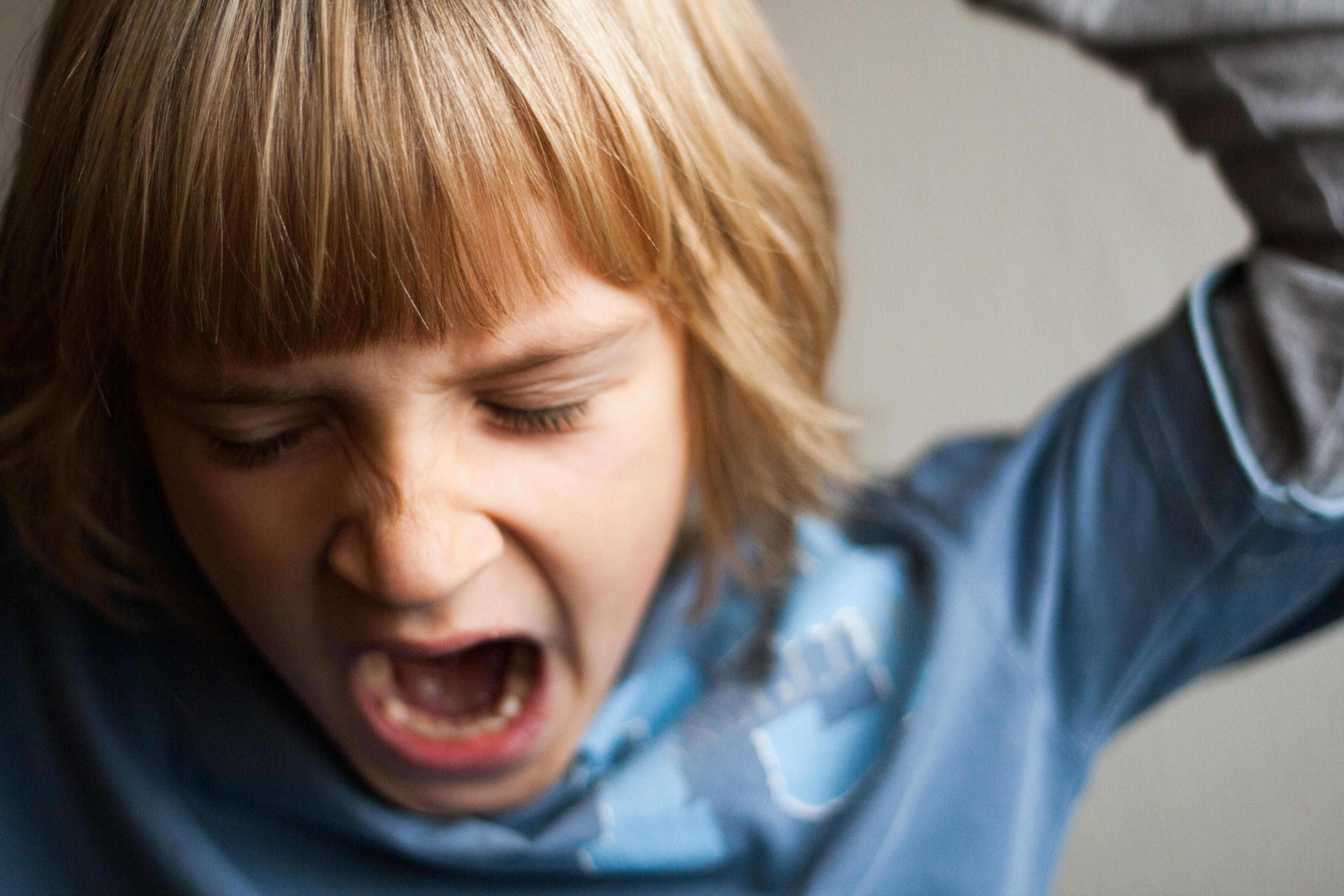 ¿Qué es la violencia filio-parental y qué factores la generan?